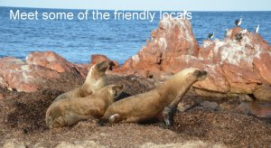 Meet some of the friendly locals